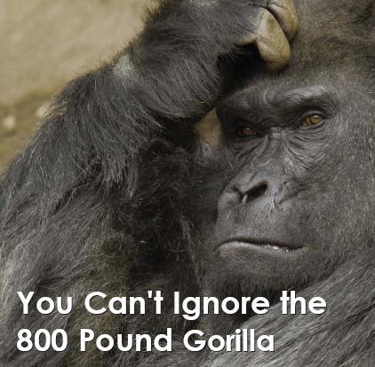 Silverback can't ignor 800 lb gorilla