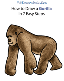 gorilla-final (1)