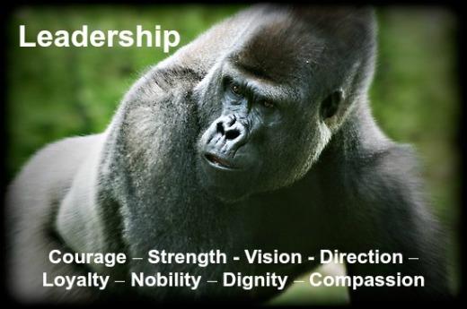 Silverback Leadership